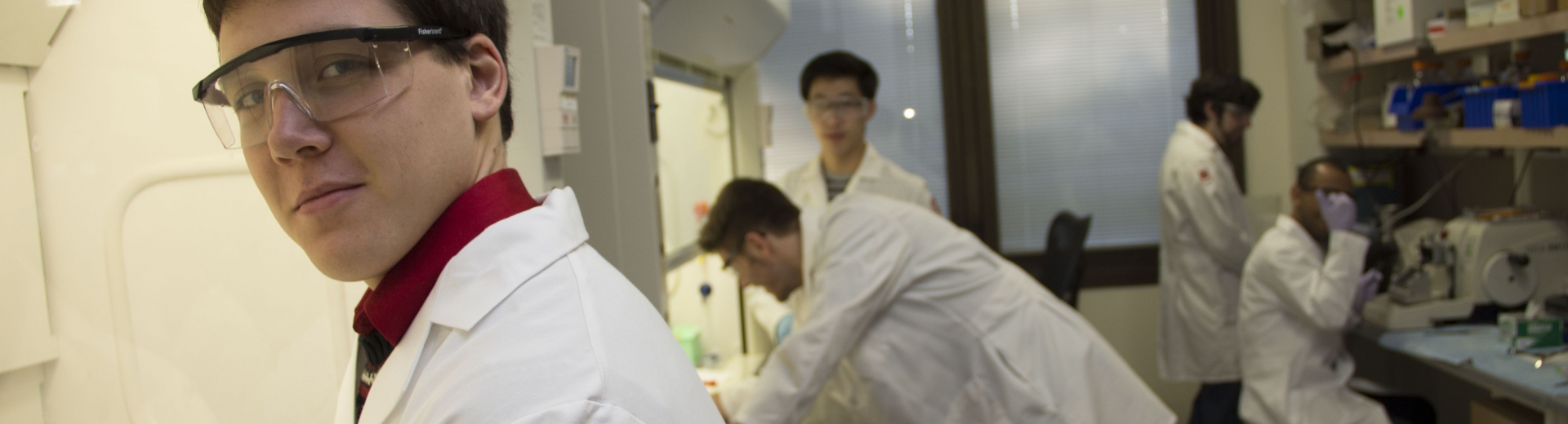 Undergraduate students in research lab