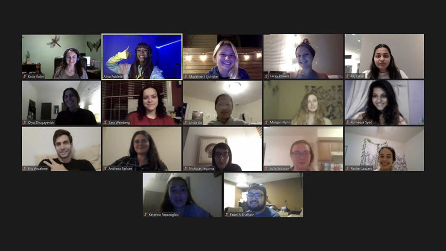 students in Zoom meeting